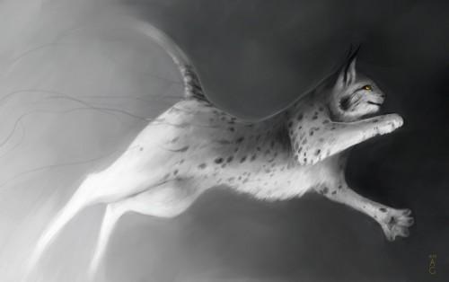 lynx - zonbi